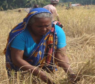 Sahera-Begum